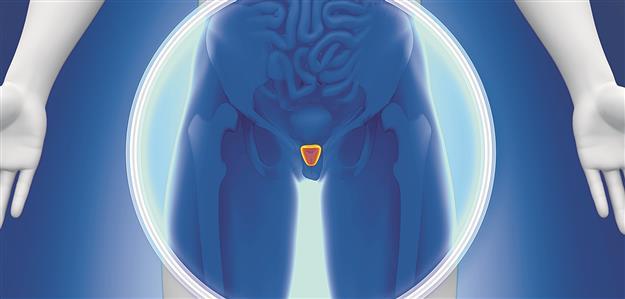 Hilft Propolis bei Prostataentzündung?