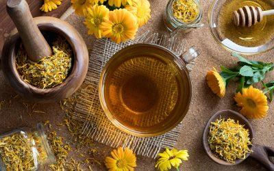 Wirkt die Ringelblume heilend?